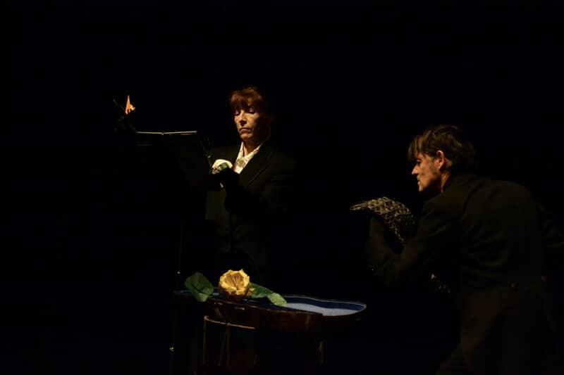 Pierre & Le Loup - Théâtre en KIT
